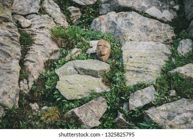 stone golem. stone face. mountain keeper. stone head