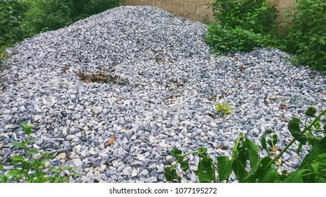 Stone gravel with green plants