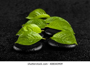stone with green leaves in drops of water isolated on a black background