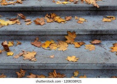 Stone grey steps in autumn park background