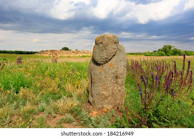 Stone idols in ukrainian steppe