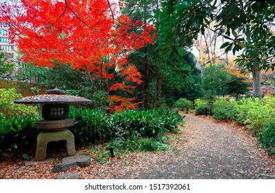 A stone lantern by a path in the forest of fiery autumn foliage in beautiful Rikugi-en Park, a traditional Japanese garden & a tourist attraction famous for vibrant fall colors in Tokyo, Japan, Asia