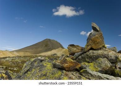 Stone with lichen