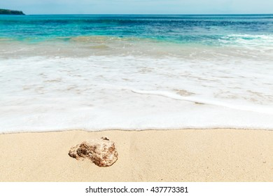 Stone lying on the beach in front of the ocean wave