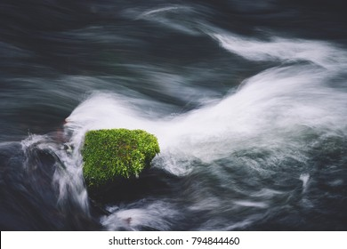 Stone and moss in the creek