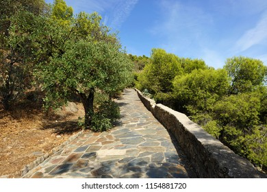 Stone path of ascent to the castle of Gibralfaro in Malaga, capital of the Costa del Sol. Andalusia, Spain