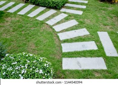 Stone Path in garden