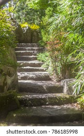 Stone path leading up through garden