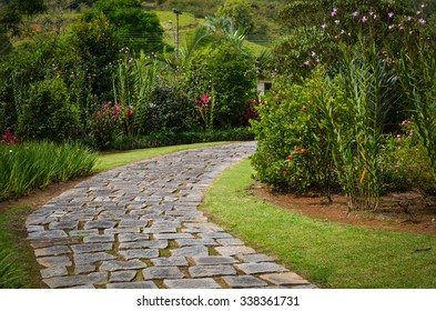 Stone path on a green garden with flowers