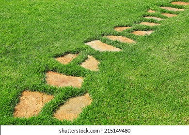 Stone path on the green grass.