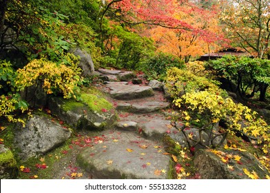 A stone path strewn with autumn leaves is surrounded by the bright colors of Japanese maples, moss, and other plants in a Japanese garden in Seattle, Washington.