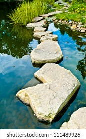 Stone path in water garden
