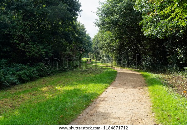 A stone path winds between wide grass verges and tall trees, Off in the dostance two figures walk a small dog.