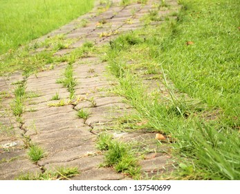 Stone pathway closeup