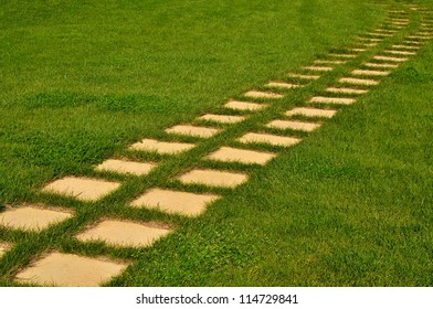 Stone pathway in the garden and green grass