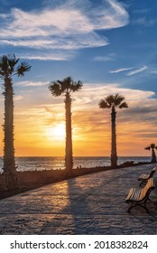 Stone pavement with palms along the sea at sunset. Tenerife. Canary Islands. Spain