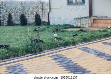 Stone pavement in perspective. Stone pavement texture. Granite cobblestoned pavement background. Abstract background of a cobblestone pavement close-u, home