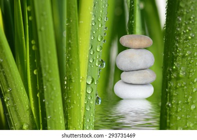 Stone pile,drops on green leaves