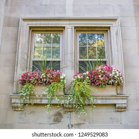 Stone planter boxes on the white brick window ledge of a historic house are overflowing with colorful flowers in Montreal, Canada.