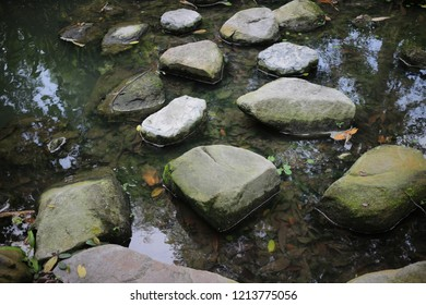 stone in the river