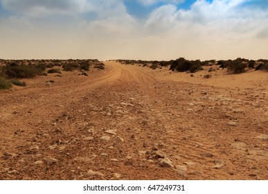 Stone road in morocco desert, with blue sky and clouds