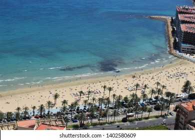 stone and sandy beach with palm trees