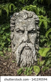 A stone sculpted head of a bearded man in garden.