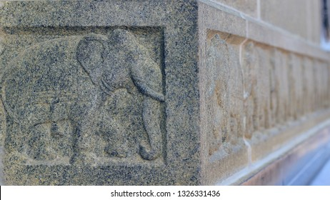 stone sculpture of Indian elephants craving on the walls of Vivekananda Rock memorial at Kanyakumari, Tamil Nadu India.