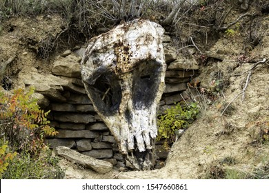 Stone skull in forest, park of the unveiled, Navarre