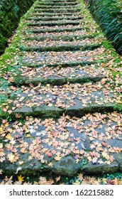Stone staircase with a moss, and  fallen leaves. (Park in Hakone)