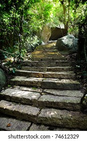 stone staircase with sunlight in the rainforest
