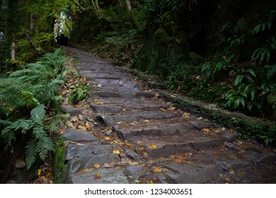 Stone Staircase at Torc Waterfall, Ireland