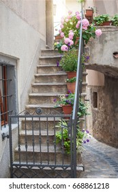 Stone stairs with flower pots in the mediterranean old town
