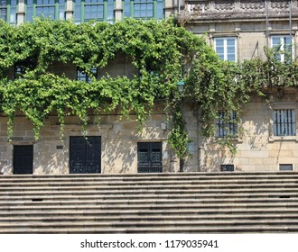 stone stairs on the street and facades with plants on the balconies