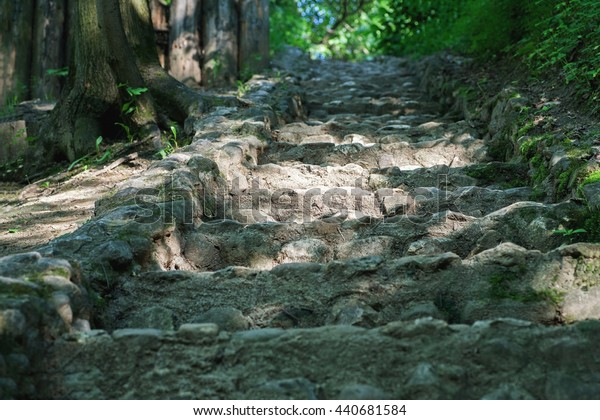 Stone stairs in the park among trees, selective focus