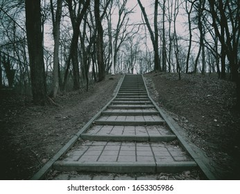 Stone stairs with trees on the side. Bleak landscape in Romania.