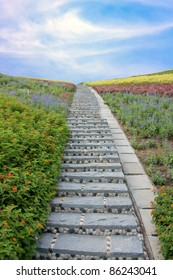 Stone stairway with flowers and blue sky, at shenzhen, china