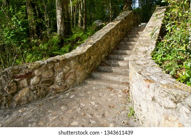 Stone Stairway Leading into the Woods