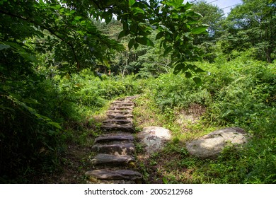 """Stone steps along a mountain trail. Translation for the text on the stone: """"Hero Slope""""."""