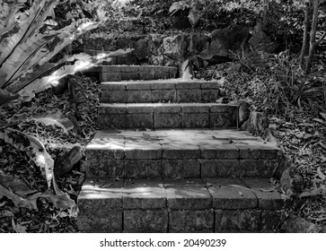 Stone steps in black and white produce an eerie scene