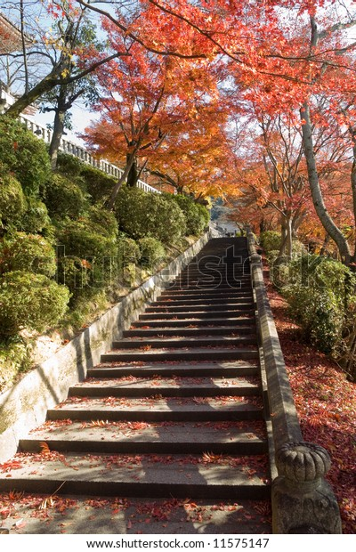Stone steps covered in red maple leaves leading up to Kiyomizu temple in autumn