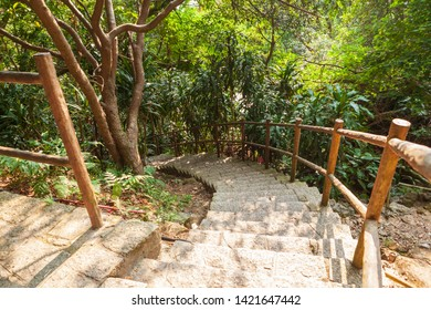 Stone steps in empty forest park at Hong Kong