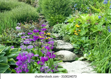Stone steps going through charming English cottage garden full of colourful flowers and shrubs