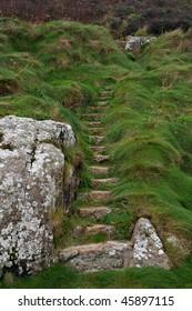 Stone steps up grassy hillside