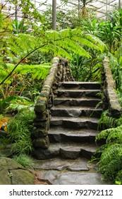 Stone steps in the lush garden in Lisbon
