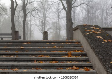 Stone steps in misty autumn park