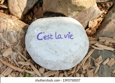 Stone with text C'est la vie on wooden background