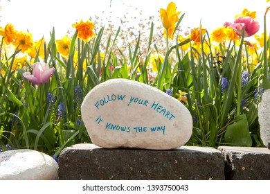 Stone with text: Follow your heart it knows the way against beautiful flowers