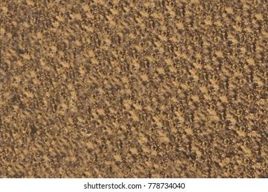 stone texture stone background