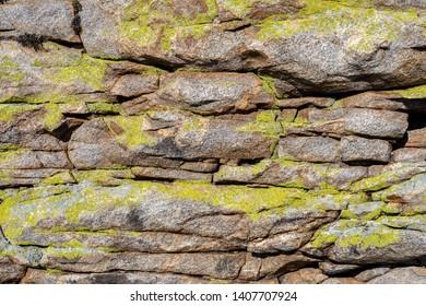 stone texture with green lichen